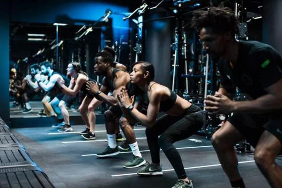 为什么场馆需要健身房管理软件?一文为你解疑插图(2)